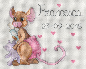 Welcome Baby Francesca